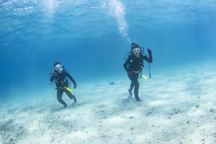 体験ダイビング14