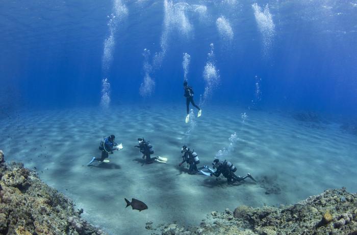 体験ダイビング16