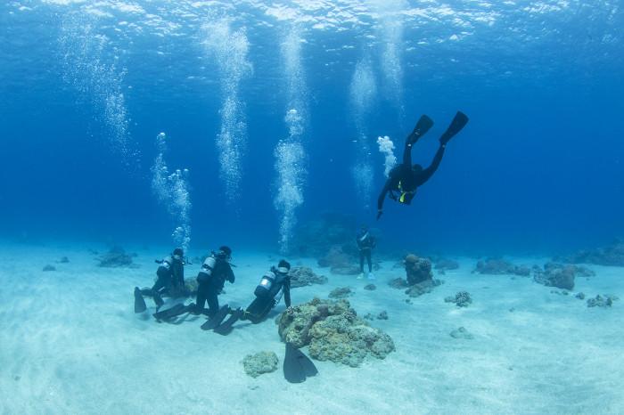 体験ダイビング10