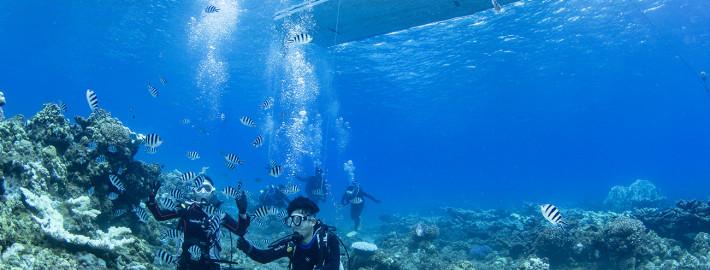 体験ダイビング52b