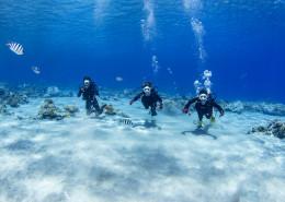 体験ダイビング55b
