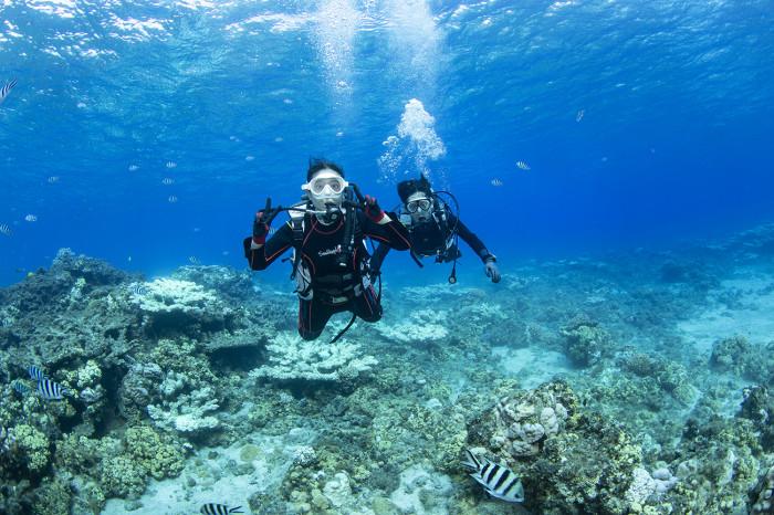 体験ダイビング46b