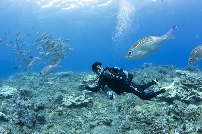 体験ダイビング57b