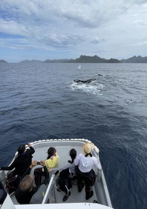 クジラ102b